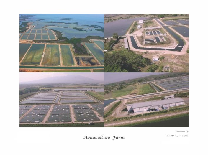 Aquaculture_Farm_Page_03