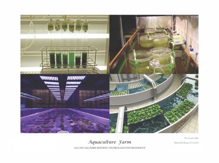 Aquaculture_Farm_Page_18