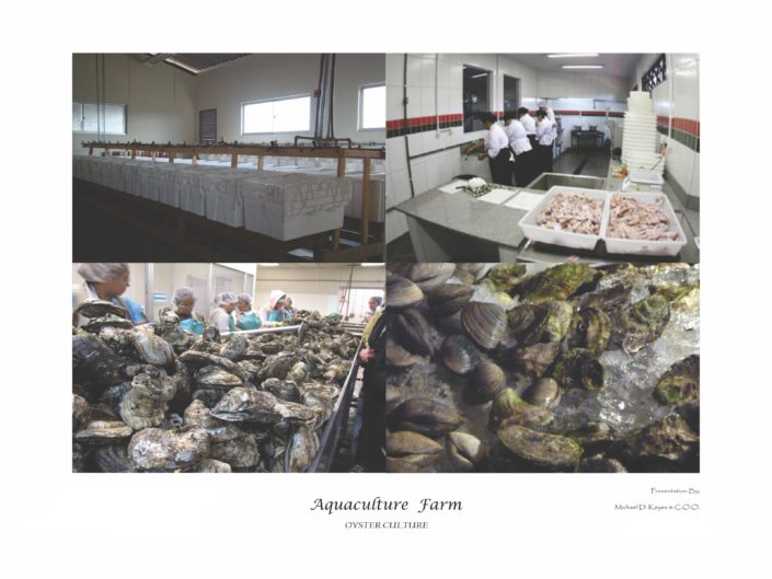 Aquaculture_Farm_Page_25