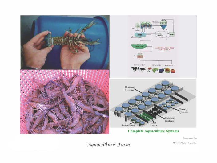 Aquaculture_Farm_Page_31